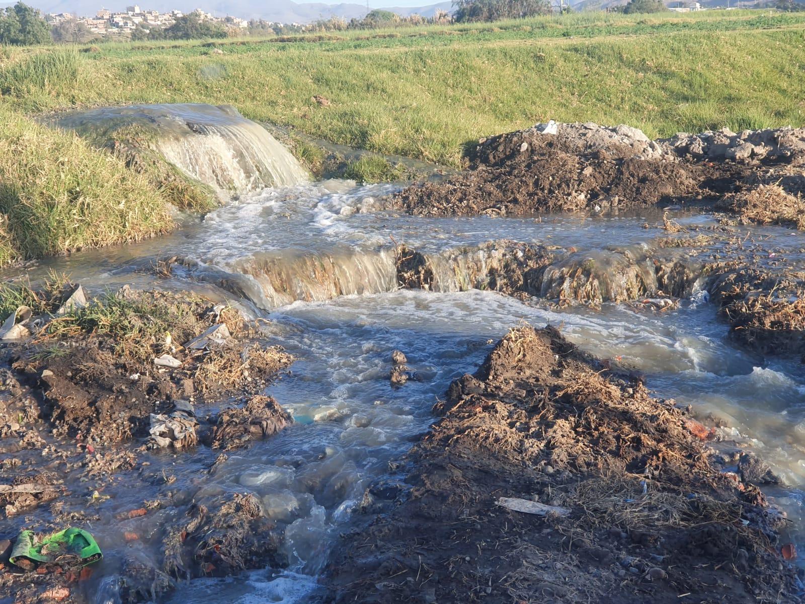 Agricultores de Socabaya denuncian el colapso constante de desague que afecta sus chacras y su ganado